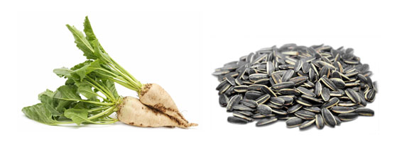Thực phẩm bổ sung collagen - Nguồn Vitamin B3